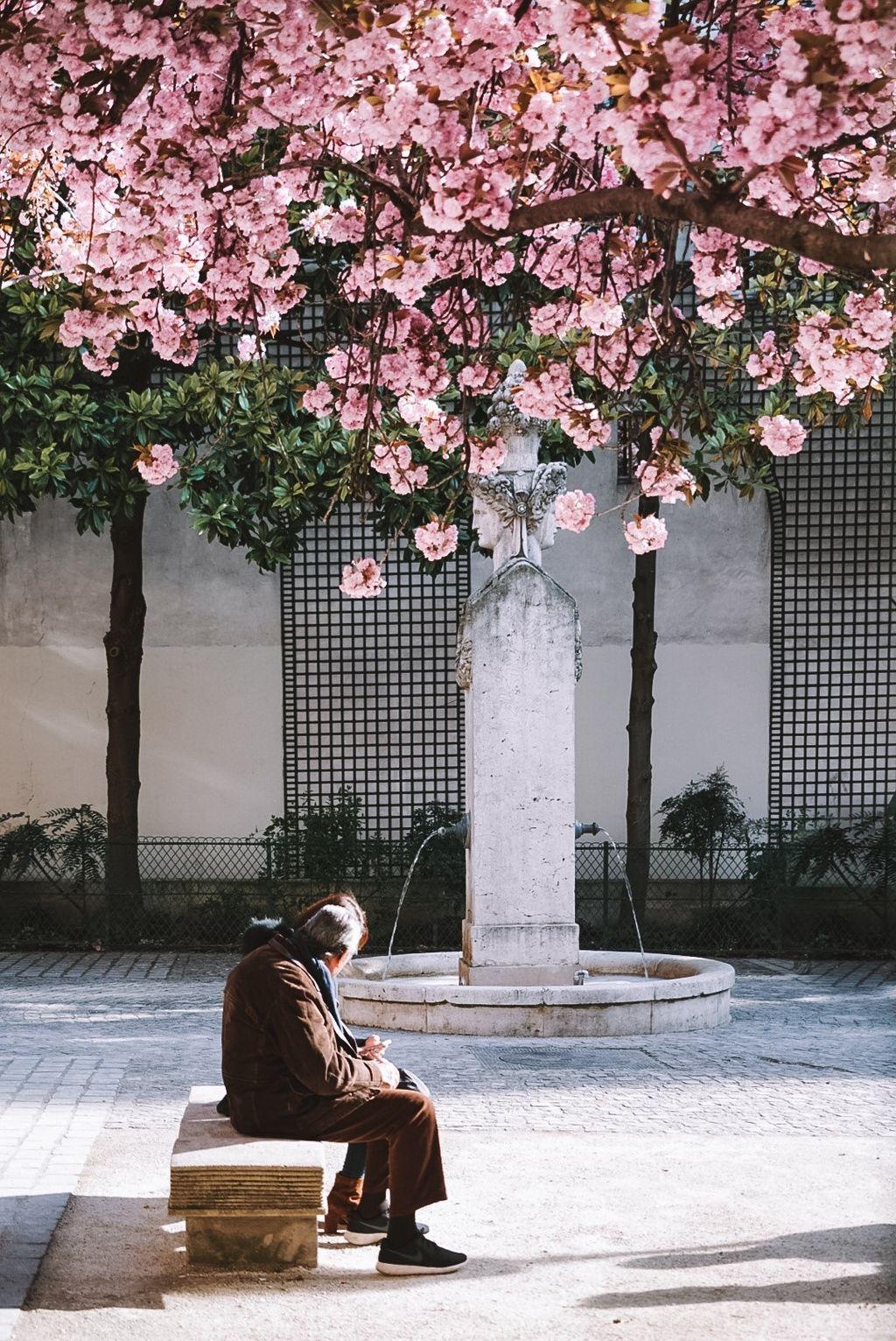 Proljeće u Parizu