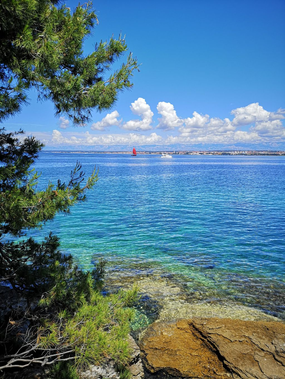Otok Ošljak - 7