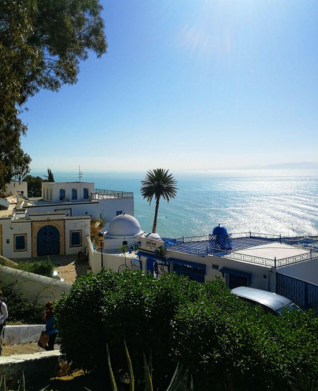 Tunis - 11