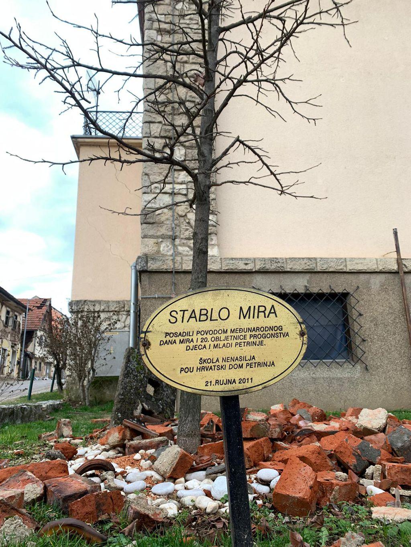 Stablo mira u Petrinji