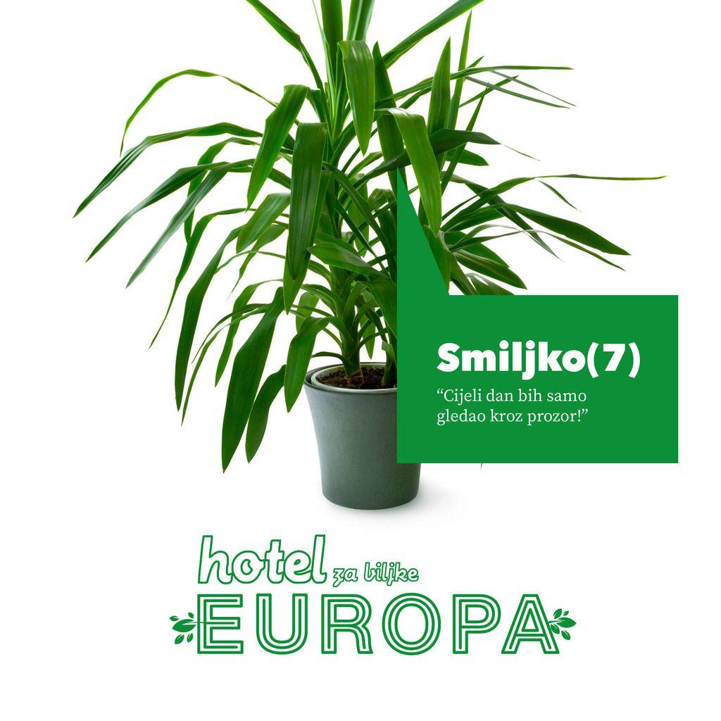 U kinu Europa otvoren prvi zagrebački hotel za biljke - 1