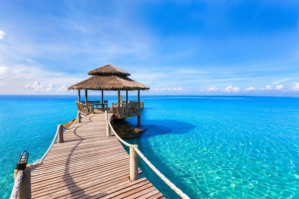 RIBA - Maldivi
