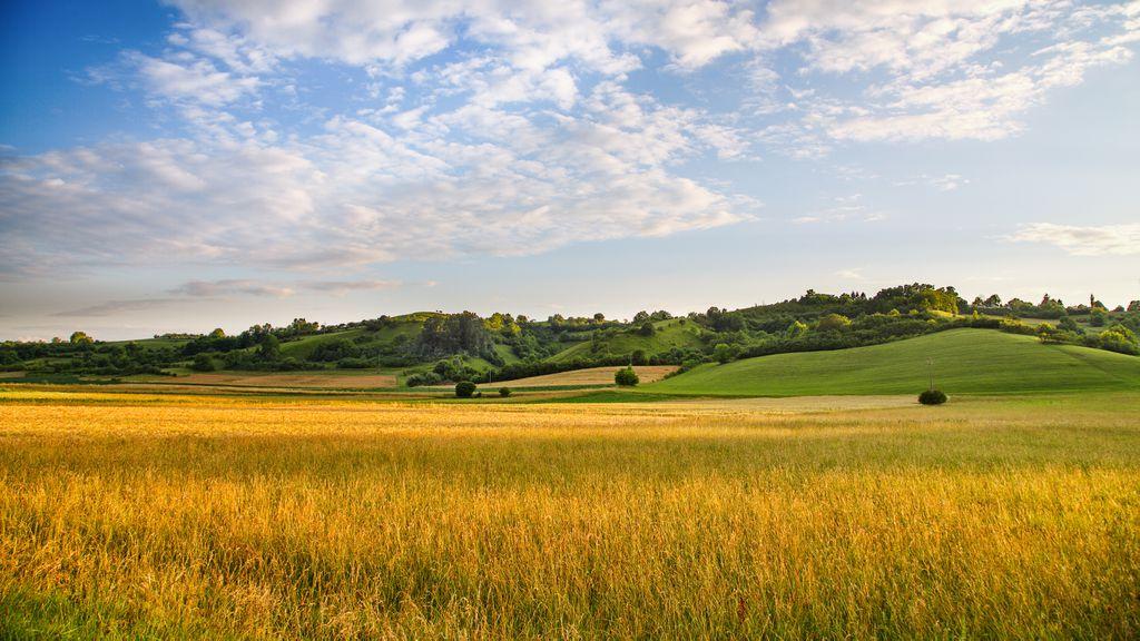 Žumberačka polja
