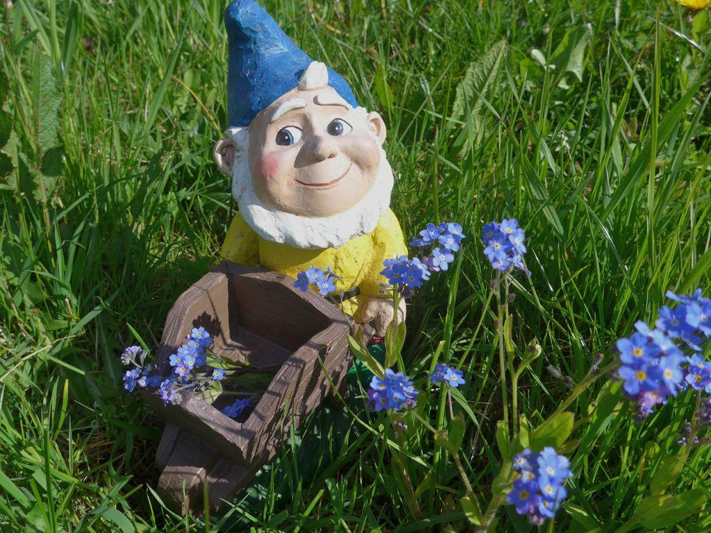 Patuljak je najslađi ukras vrta - 2