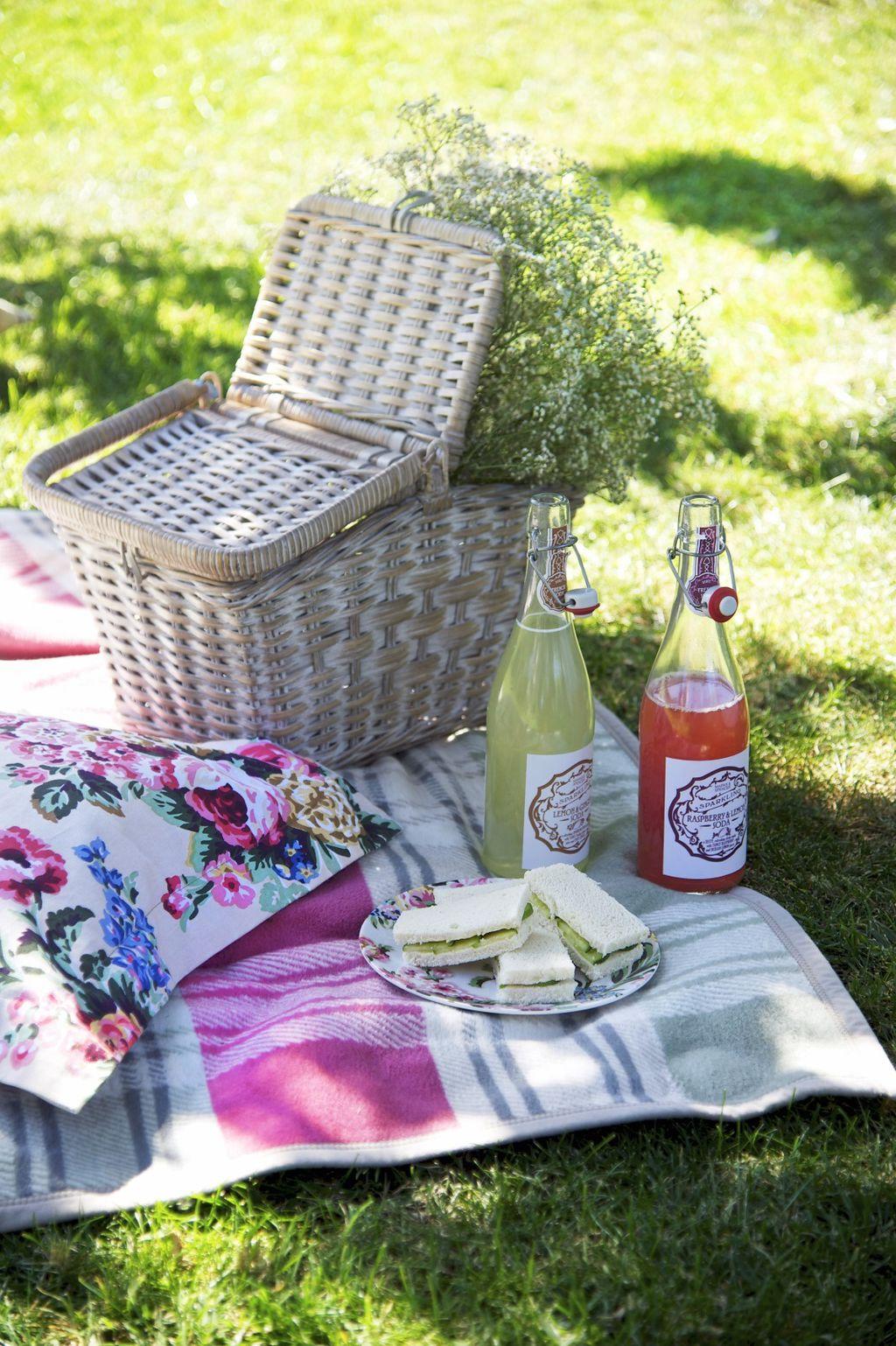 Piknik u dvorištu - 10