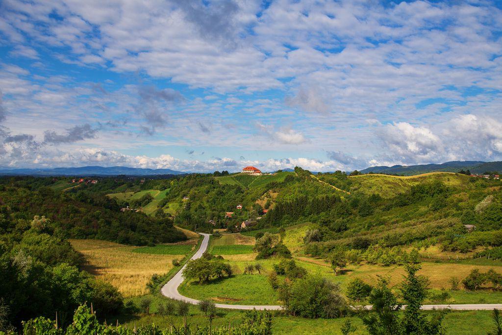 Plešivička vinska cesta