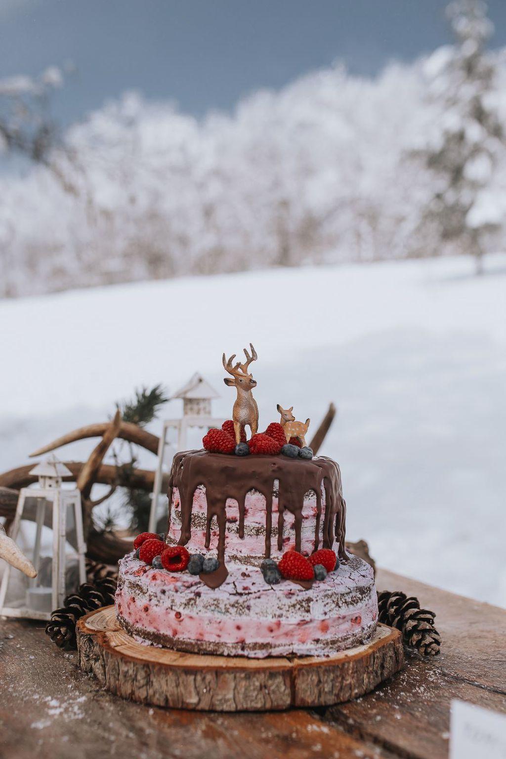 Gola torta s kremom od borovnica