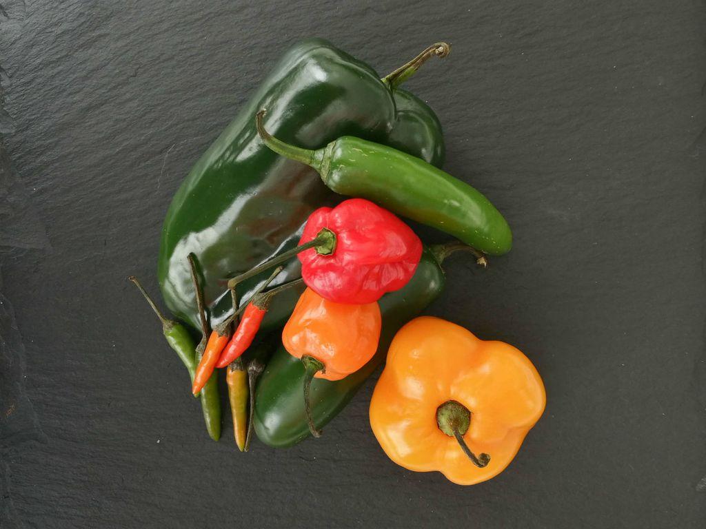 Razne vrste čili papričica