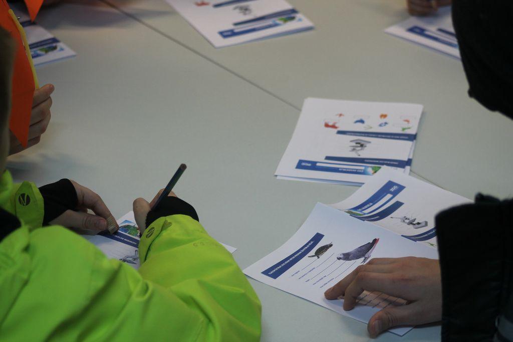 Programi Eko akademije upotpunjeni su zanimljivim igrama, a naglašavaju vrijednosti znatiželje te timskog rada