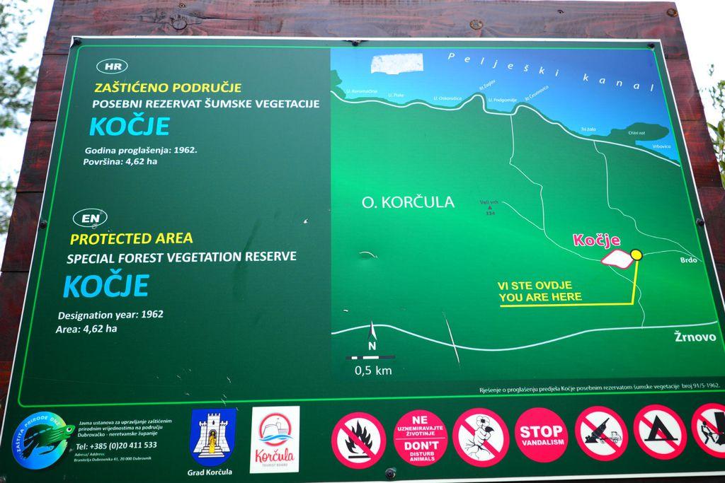 Posebni rezervat šumske vegetacije Kočje