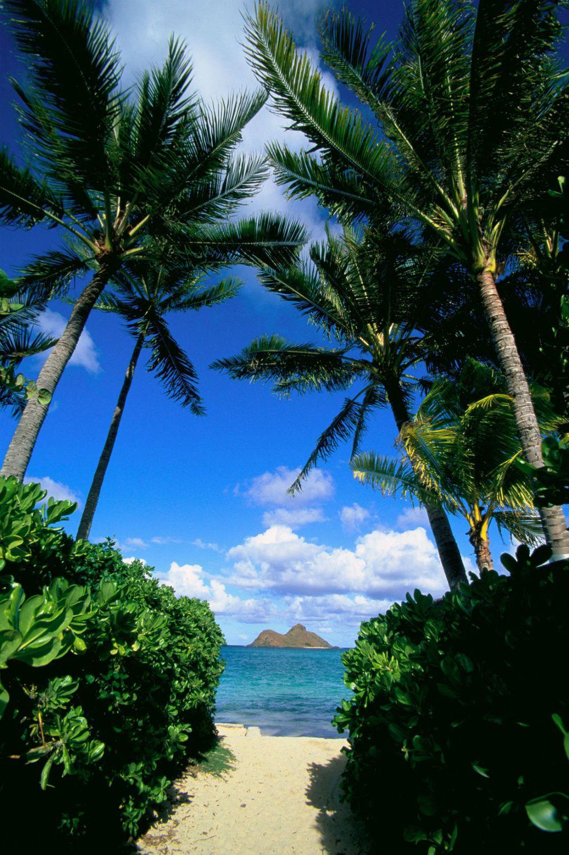 Prekrasan otok Oahu