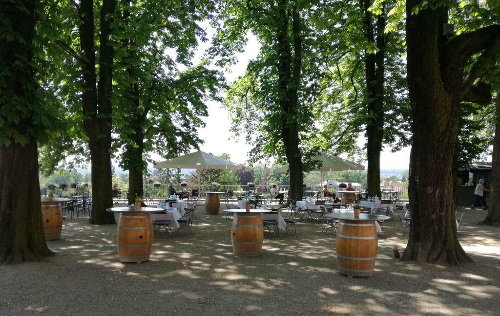 Smirujuća terasa vinarije Hoflössnitz