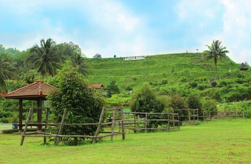 Zeleni brežuljci u Gunungkidulu