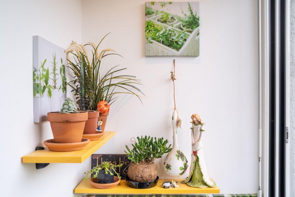 Stvorite svoj vlastiti zeleni kutak unutar samog boravka