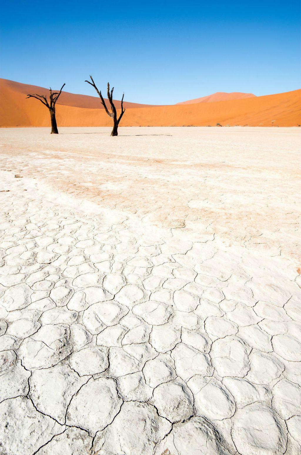 Zapanjujući prizori u namibijskoj pustinji