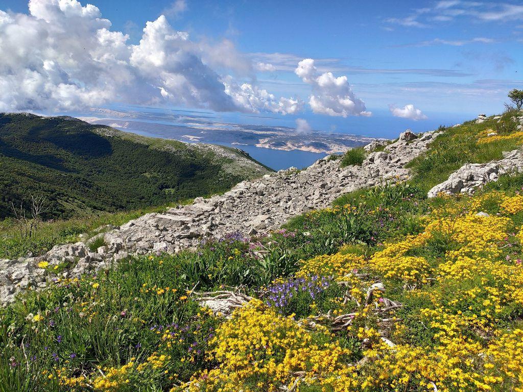 Via Adriatica Trail - 11