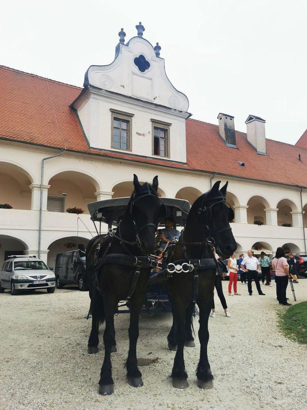 Living castles - dvorac Rakičan - 4
