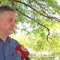 Tomislav Karamarko (Foto: Dnevnik.hr)