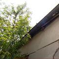 Šteta od potresa - 2