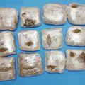 Zapljena 15 kilograma marihuane (Foto: PU splitsko-dalmatinska)