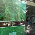 Izložba Art and Ecology