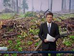 Povećan broj slučajeva mišje groznice (Video: Vijesti u 17h)