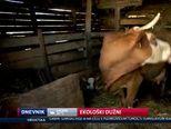 Ekološki dužni (Video: Dnevnik Nove TV)