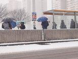 Snijeg u Zagrebu (Foto: Davor Puklavec/PIXSELL) - 1