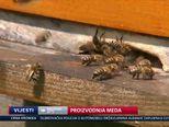 Proizvodnja meda (Video: Vijesti u 17 h)