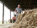 Najpoznatiji slavonski mljekar rasprodaje krave (Video: Dnevnik Nove TV)