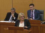 Strenja Linić: Natječaj će biti raspisan (Dnevnik.hr)