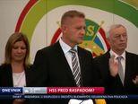 HSS pred raspadom? (Video: Dnevnik Nove TV)