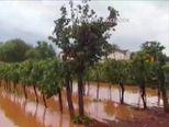 Nevrijeme poharalo Istru i riječko zaleđe (Video: Vijesti u 17h)