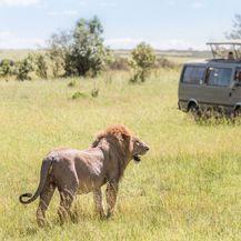 Safari u Keniji - 7
