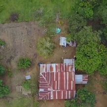 Selo u Kolumbiji svaki mjesec proizvede 100 kg kokaina (Foto: screenshot/APTN) - 5