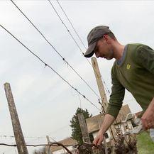 Slavonija i Baranja bez sezonskih radnika (Video: Dnevnik Nove TV)