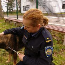 Iz skloništa za životinje u Policijsku akademiju (Foto: Dnevnik.hr) - 3