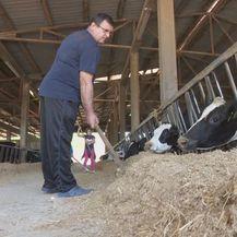 Uvoz mlijeka i sira u porastu (Foto: Dnevnik.hr) - 3