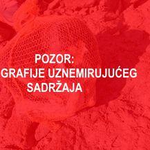 Na porečkoj plaži pronađen mrtav psić u vreći za krumpire (Foto: Facebook/Dnevna dora Porečana/Dnevnik.hr)