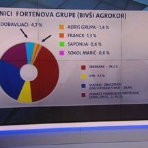 Podaci o vlasnicima Fortenove grupe (Foto: Dnevnik.hr)