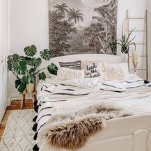 Odličan ukras svakog doma su biljke