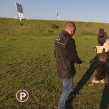 Dresiranje psa (Foto: Dnevnik.hr) - 2