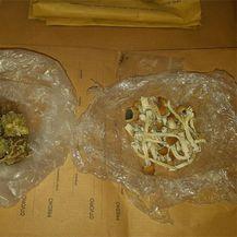 Pas As pronašao zakopanu bačvu s drogom (Foto: MUP) - 10