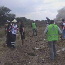 U Meksiku se srušio avion (Foto: screenshot/APTN)