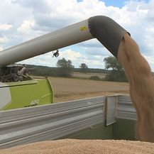 Proizvodimo pšenicu, uvozimo kruh (Foto: Dnevnik.hr) - 2