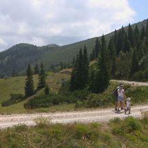 NP Sjeverni Velebit (Foto: Dnevnik.hr) - 3