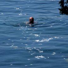 Bacili tisuće mrtvih riba u more (Foto: Dnevnik.hr) - 3