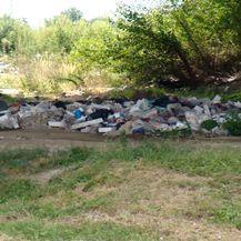 Gradonačelnik pojeo smeće (Foto: Dnevnik.hr) - 3