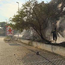 Buknuo je požar na Splitskom Žnjanu (Foto: Dnevnik.hr) - 2