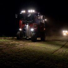 Noćna berba grožđa (Foto: Dnevnik.hr) - 2